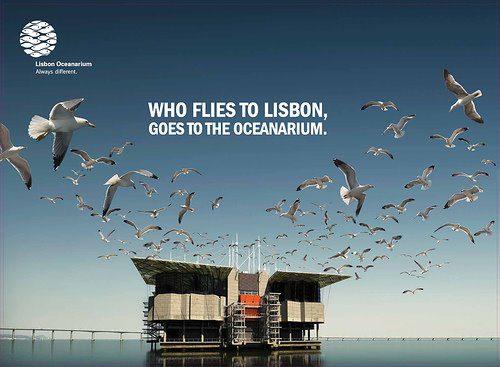 Campanha Oceanário