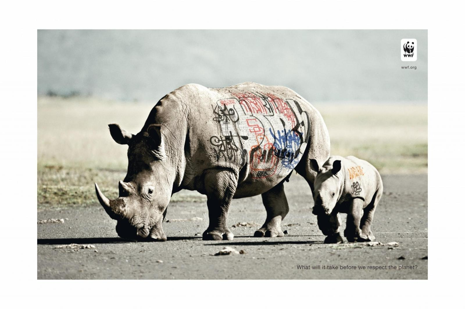 rinoceronte, animal, wwf, grafitti, respeito pelo planeta