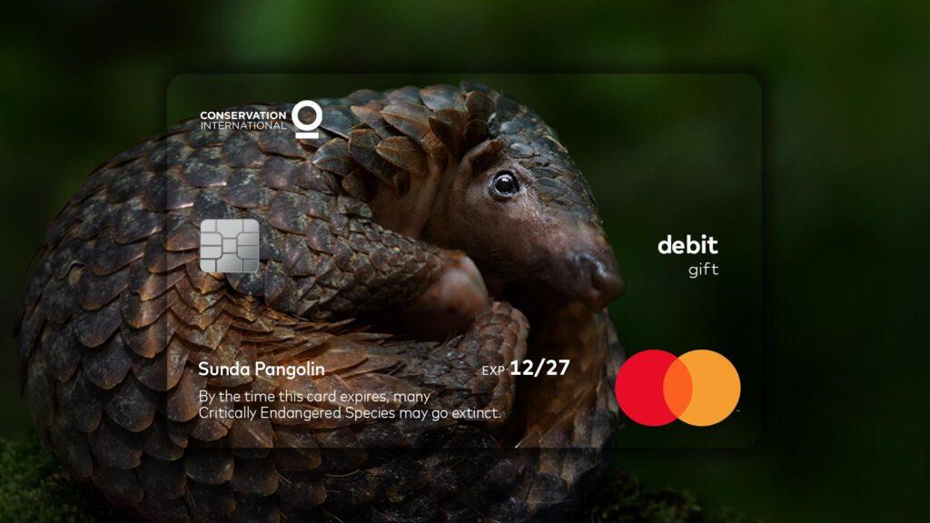 cartão pangolin mastercard animais em extinção