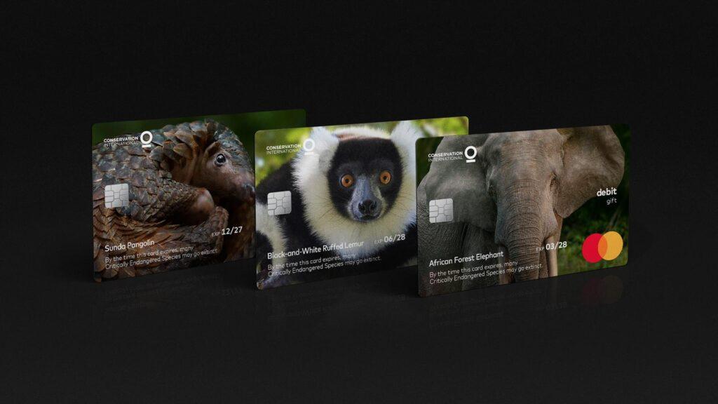 cartões mastercard animais em extinção